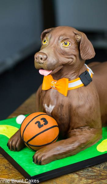 Tennessee Volunteers Sculpted Dog Grooms Cakes